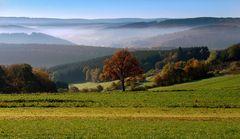 Herbstmorgen im Siegerland