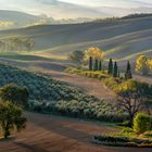 *Herbstmorgen im Val d'Orcia*