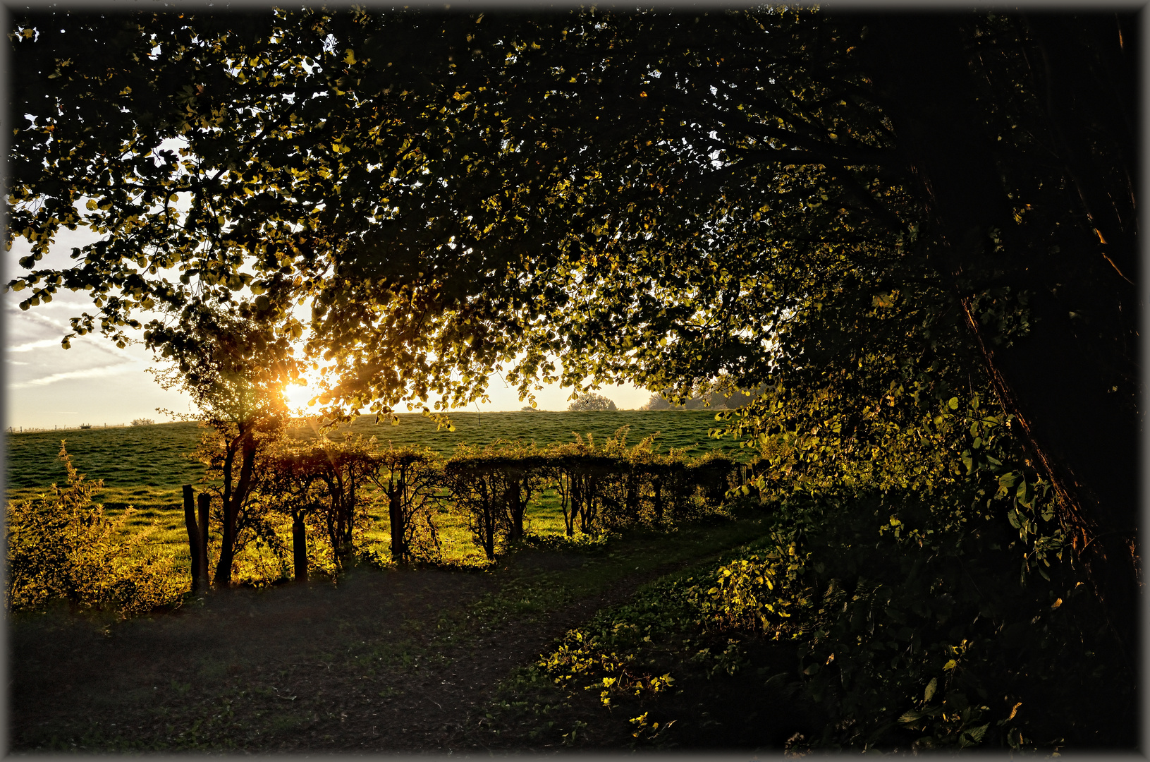 Herbstmorgen - Matinée d'automne