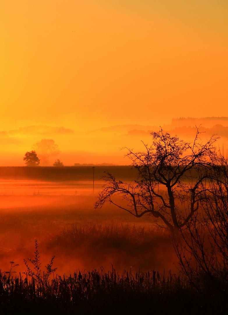 Herbstmorgennebel
