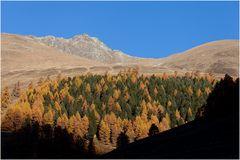 Herbstmulde