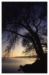 Herbstnachmittag am See