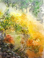 Herbstnebel am Steilhang