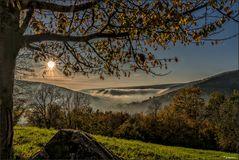 Herbstnebel im Tal