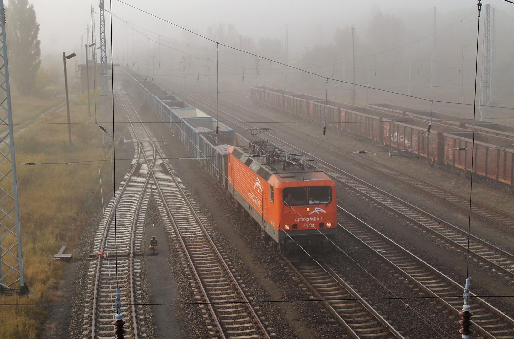 Herbstnebel über dem Oderland