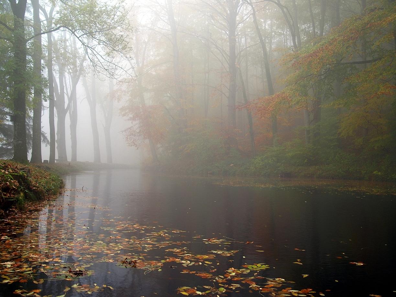 Herbstnebelsee