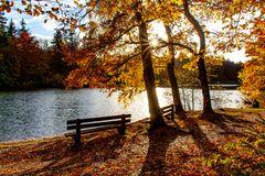 Herbst/Otoño2