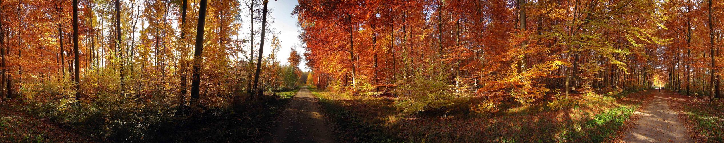 Herbstpanorama