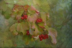 Herbstpoesie