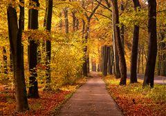 Herbstradweg