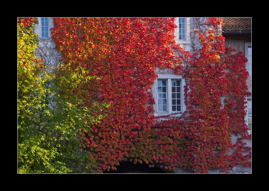 Herbstrahmen