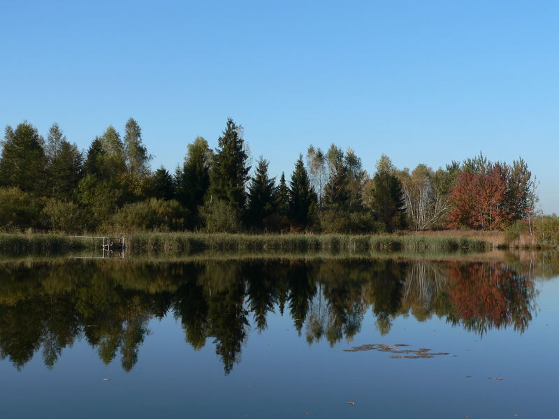Herbstreflektionen