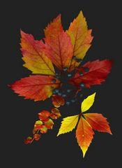 Herbstreigen