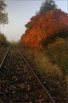 Herbstreise...