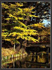Herbstromantik