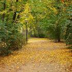 Herbstruhe