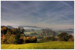 Herbstsachen [5] Kühe und Nebel