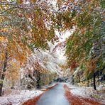 Herbstschnee