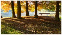 Herbstsitz