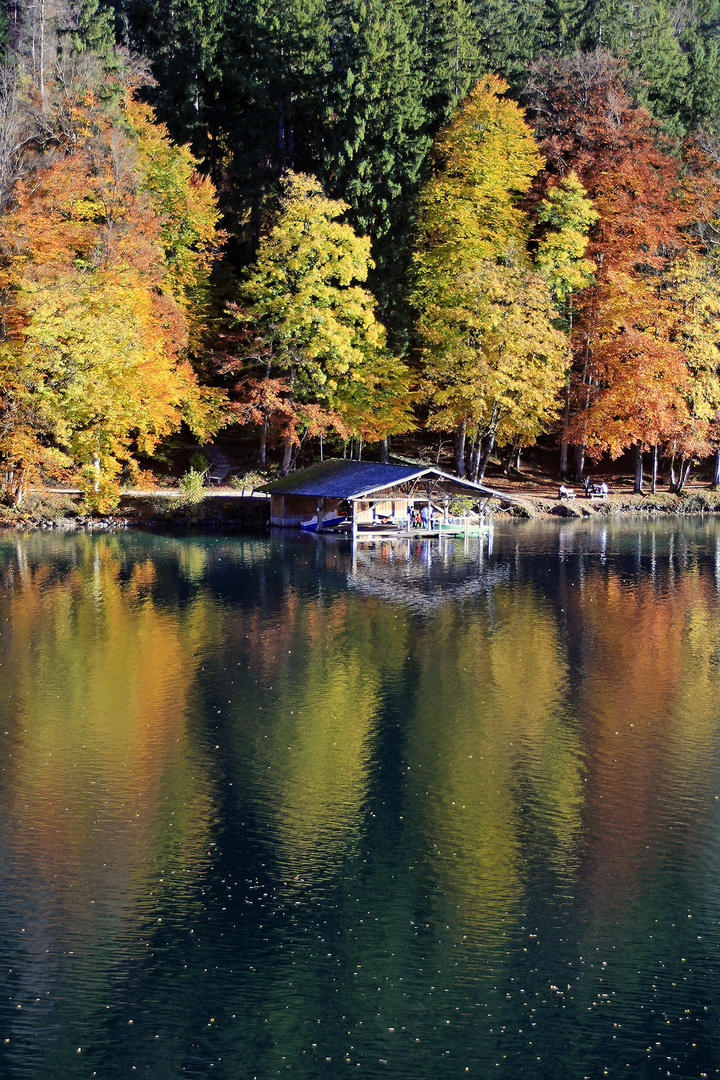 Herbstsonne!