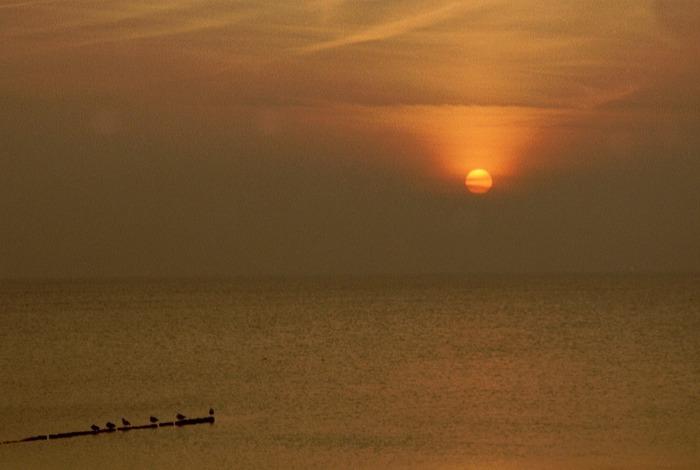 Herbstsonnenuntergang auf Hiddensee 01
