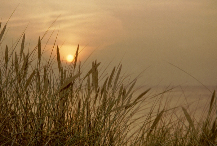Herbstsonnenuntergang auf Hiddensee 02