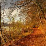 Herbstspatziergang am Gübsensee