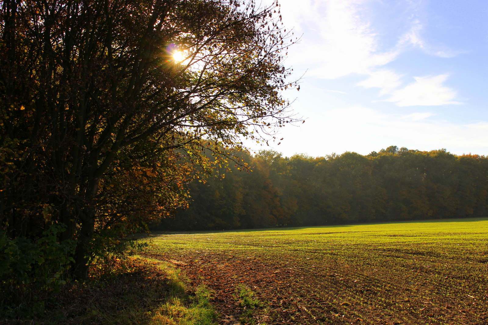 ...Herbstspaziergang...