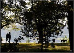 Herbstspaziergang am Rhein