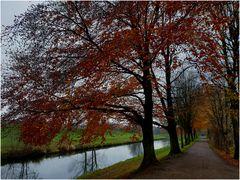 Herbstspaziergang an der Werre (I)