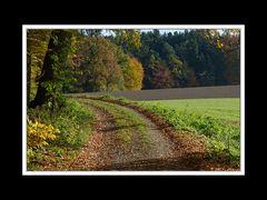 Herbstspaziergang Burgkirchen/Alz 03