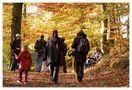 Herbstspaziergang von Jutta Grote
