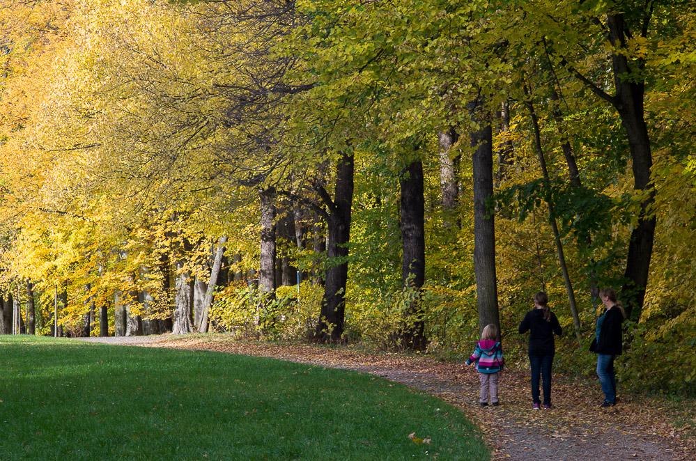 Herbstspaziergang in Chemnitz IV