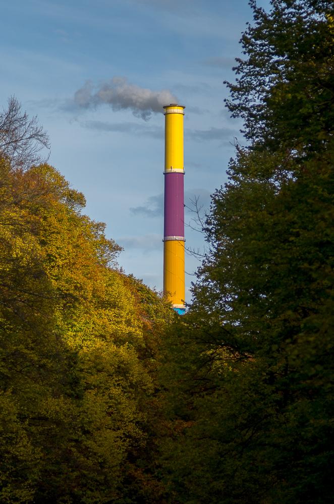 Herbstspaziergang in Chemnitz V
