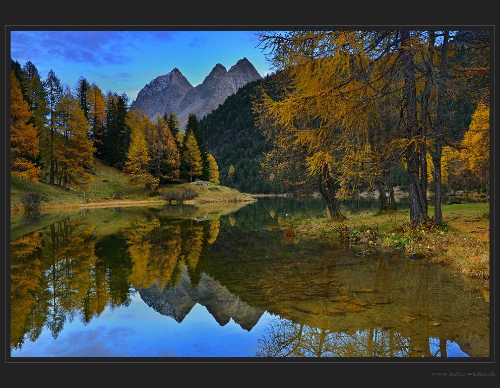 Herbstspiegelung - DRI