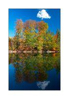 Herbstspiegelung mit Wolke
