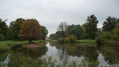 Herbstspiegelung002