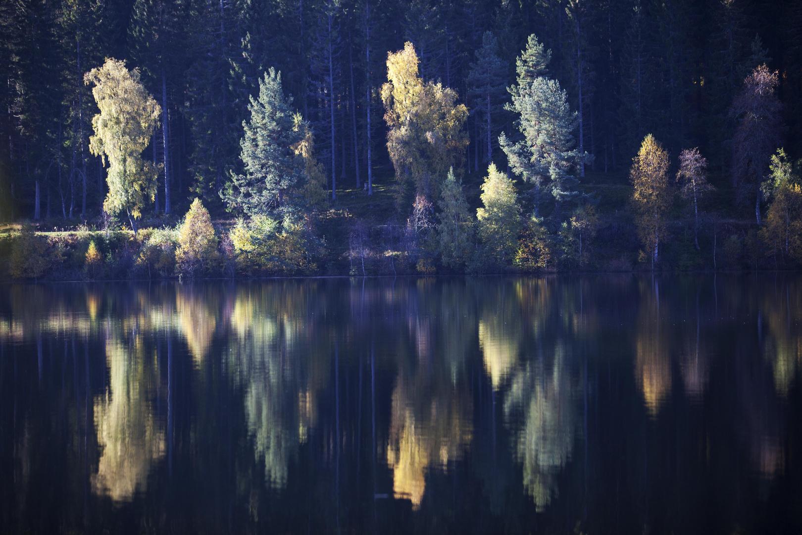 Herbstspiegelungen