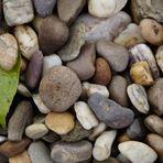 Herbststeine