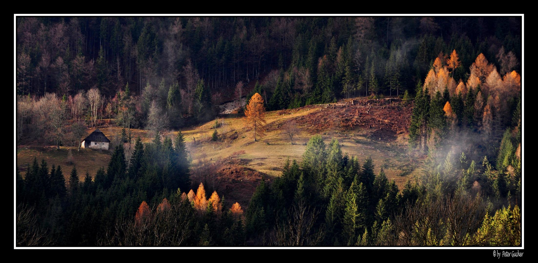Herbststimmung 10