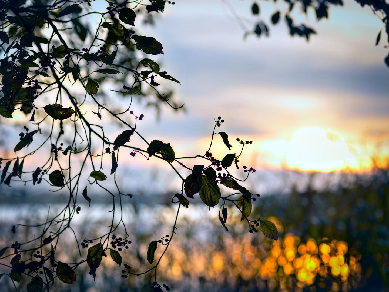 Herbststimmung am Chiemsee