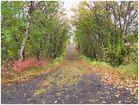 Herbststimmung am Mývatn