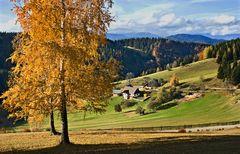 Herbststimmung am Plesch!