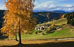 Herbststimmung am Plesch! (Reload)