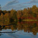 Herbststimmung am Schallweiher