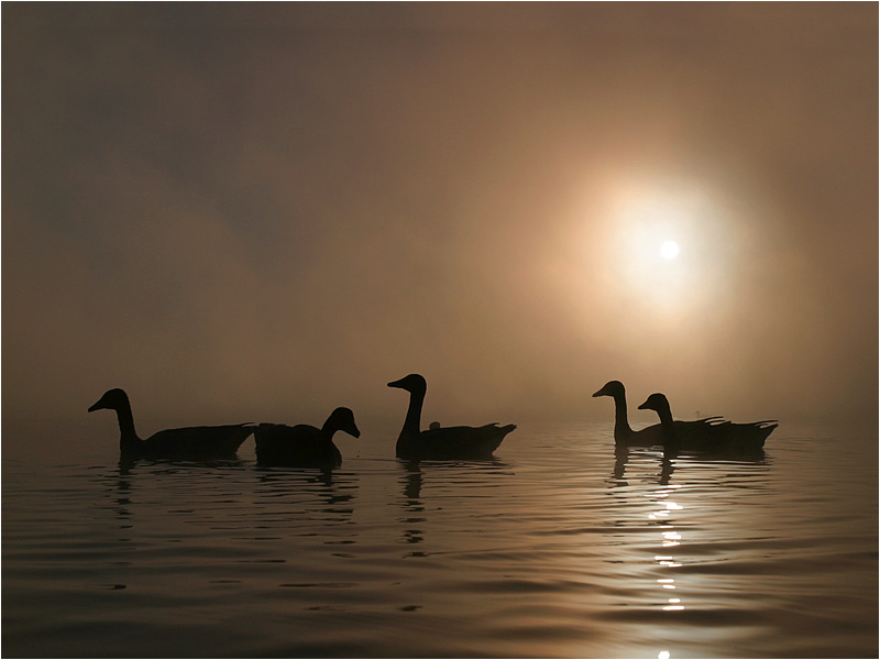 Herbststimmung am See