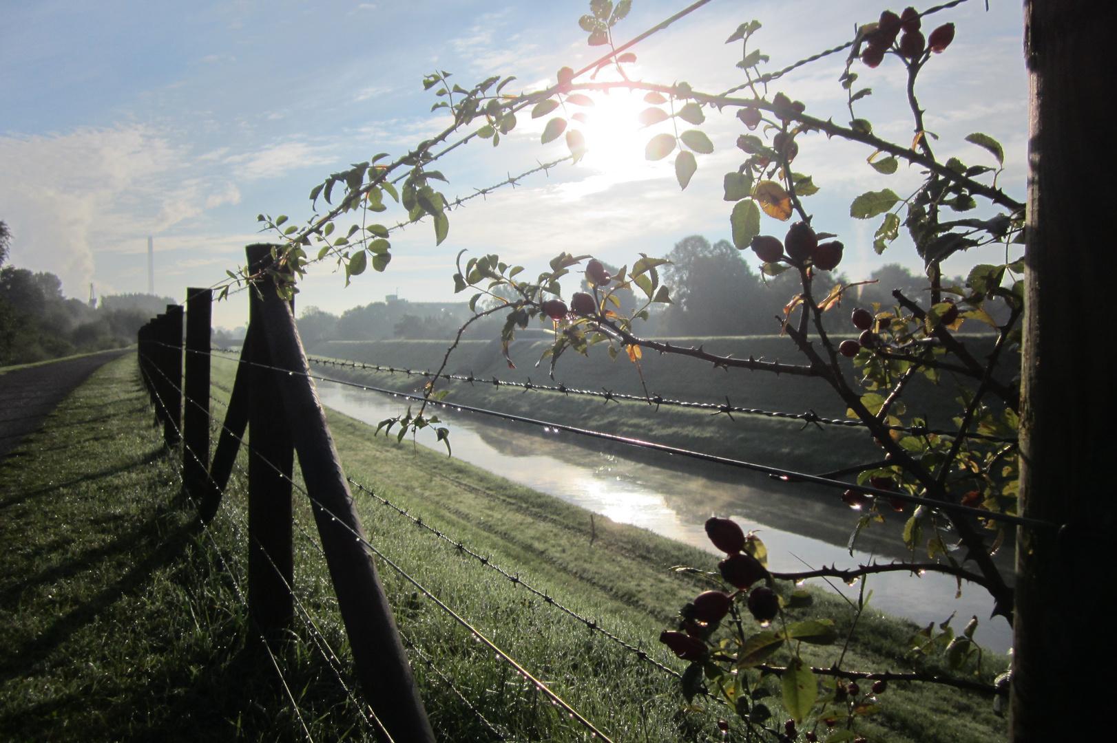 Herbststimmung an der Emscher in Wanne-Eickel