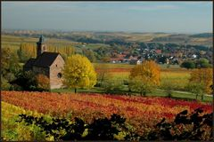 Herbststimmung bei Klingenmünster (Pfalz)