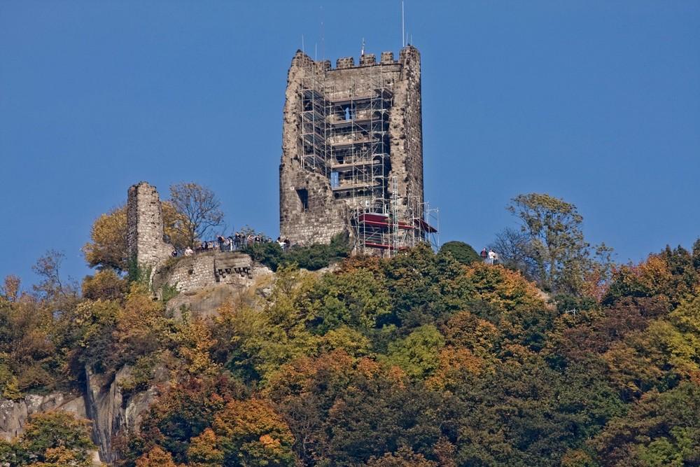 Herbststimmung Burgruine Drachenfels (2)
