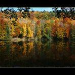 Herbststimmung II